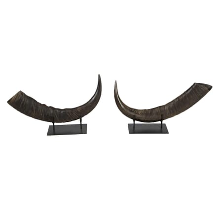 Pair of Mounted Horns DA0112597