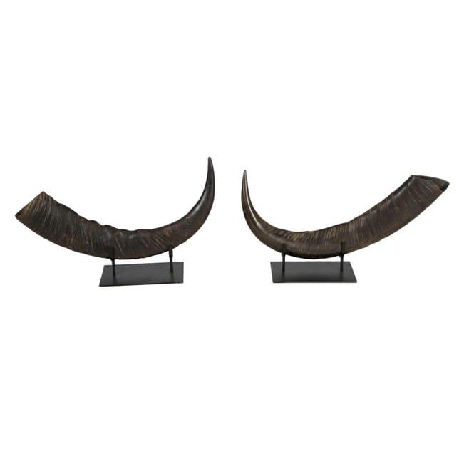 Pair of Mounted Horns DA0112597