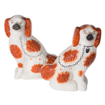 Pair of Staffordshire Dogs DA5558745