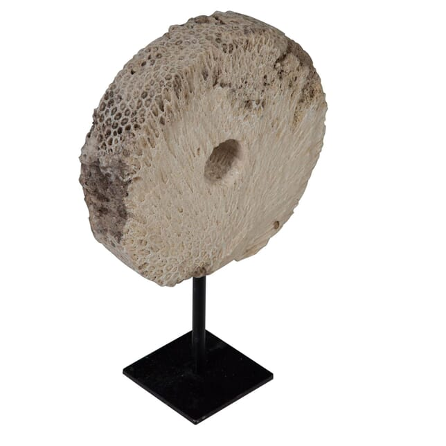 Fossilised Coral Wheel on Stand DA0154592