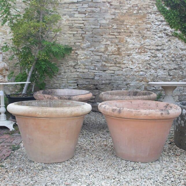 20th Century Terracotta Tree Pots GA1961456