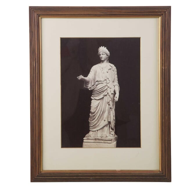 Photograph of a Classical Figure WD3956891