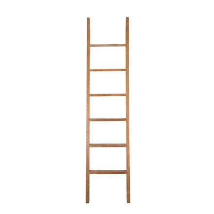 20th Century Library Ladder OF3759121