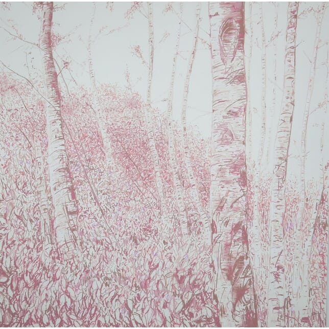 After Atget Bois de Bouleau Pink WD9962463