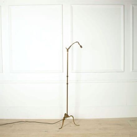 Swan Neck Floor Lamp LF1560795