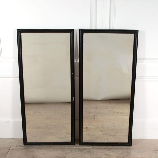 PAIR OF OUTFITTERS MIRRORS MI7462477