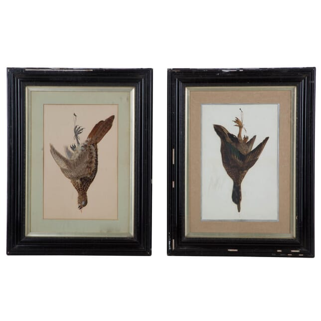 Pair of Victorian Feather Bird Pictures WD135344