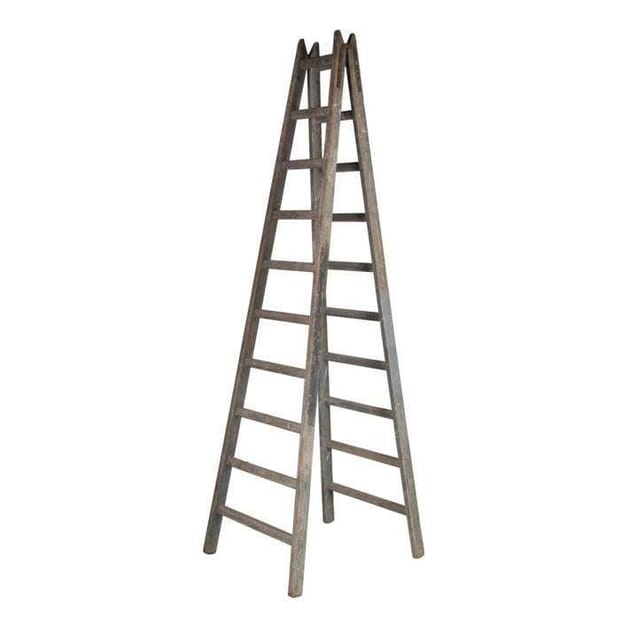 Early 20th Century French Painter's Ladder OF3513360