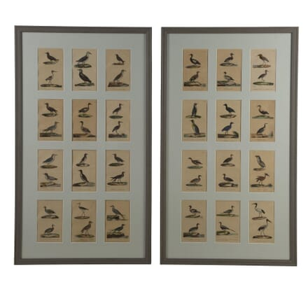 Pair of Framed Groups of Bird Lithographs WD3060002