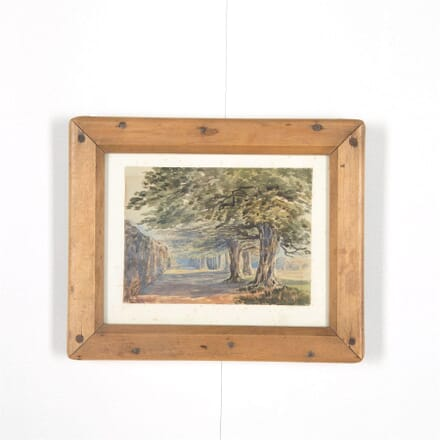 Avenue of Trees Woodland Watercolour WD287567