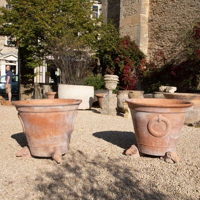 Large Pair of 20th Century Terra-cotta Planters/Pots GA427596