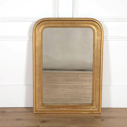Water Gilded French Mirror MI7161745