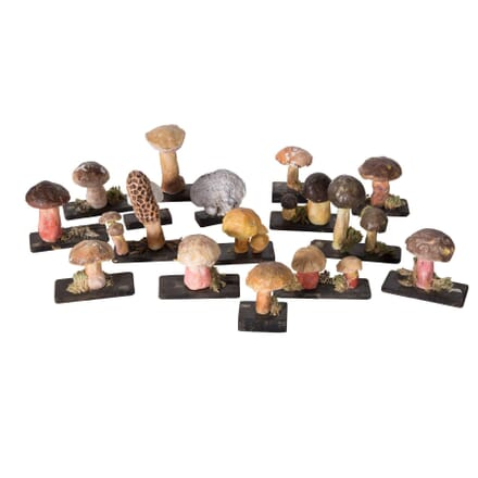 Collection of Plaster Mushrooms DA5558779