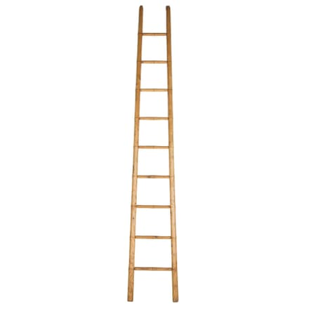 19th Century Ladder OF107805