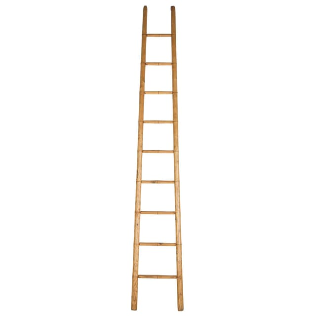 19th Century Ladder OF107805