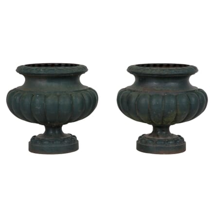 Pair of Medici Urns GA204477