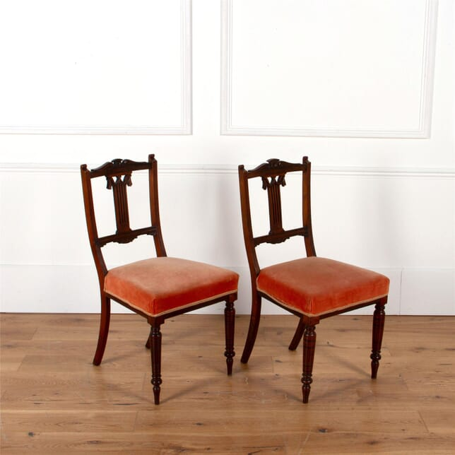 A Pair of Edwardian Mahogony Hall Or Parlour Chairs With Velvet Seat CH5962524