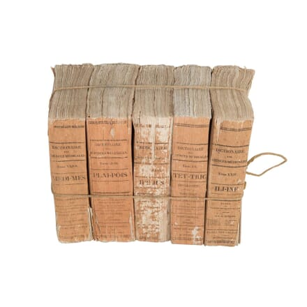 Bundle of French Terracotta Books DA4412890