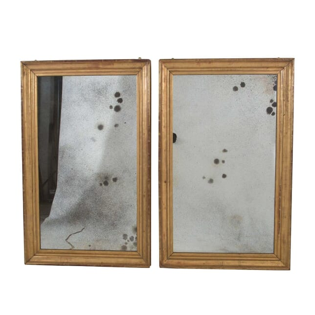 Pair of 19th Century Mirrors MI0157394