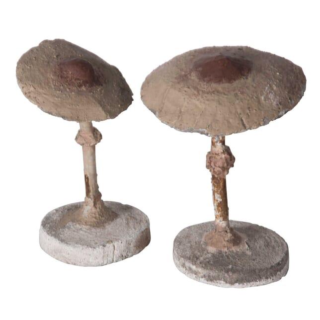 Pair of Stone Mushrooms DA5558761