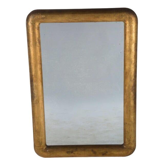 Wide Framed Gilded Mirror MI7460514