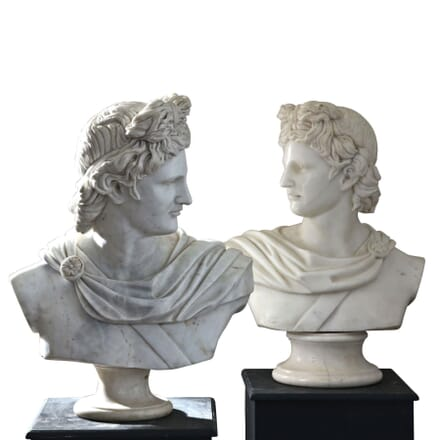 Marble Busts of God Apollo GA1261063