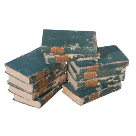 Group of Blue Distressed 19th Century Books DA5558789