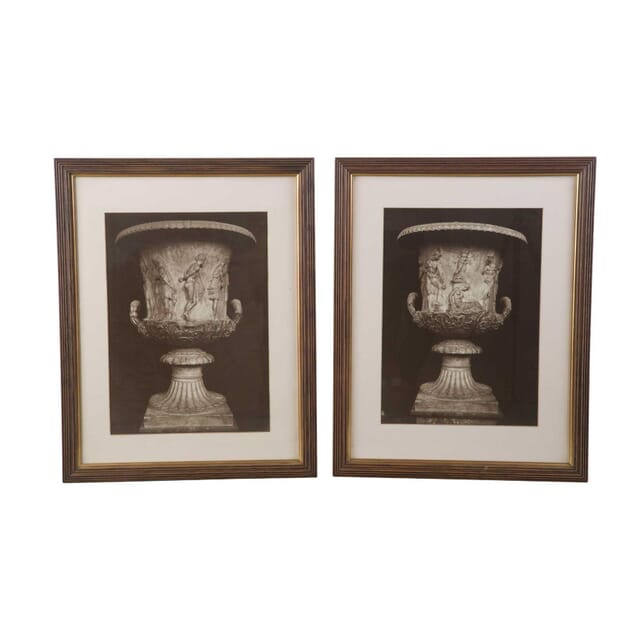 Pair of Photographs of a Classical Urn WD3956892