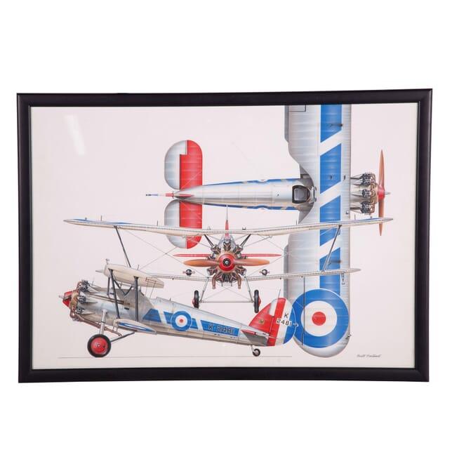 Bi Plane Print WD5359309
